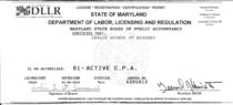 Cpa license 2015 cv