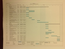Project schedule cv