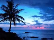 Hawaiipd cv