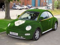 Lion lawns artificial grass vw beetle cv