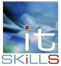 It skills cv