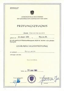 1981 06 12 kellner zeugnis 2 cv