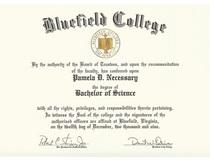 Bc degree cv