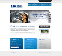 Ms website 2011 cv