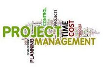 Project management cv