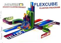Flexcube1 cv