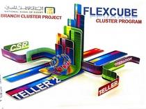 Flexcube2 cv