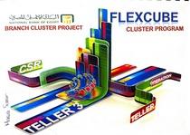 Flexcube3 cv