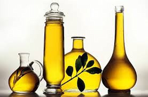 Olive oil cv