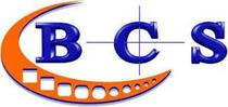 Bcs cv