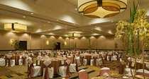 Hilton banquet cv