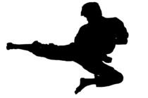 Karate11 cv