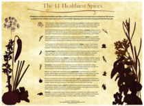 11 healthiest spices cv
