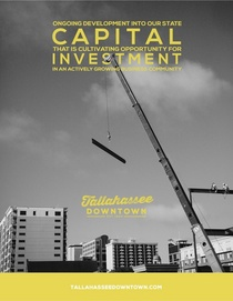 Capitalinvestment cv