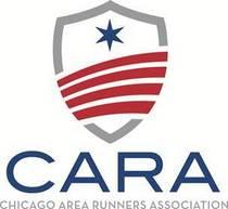 Ild cara new logo 2012 cv