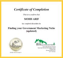 Finding your gov market cv