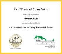 Intro financial ratio cv