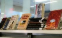 Naari books cv