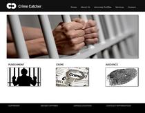 Crime copy cv