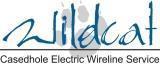 Wildcat logo hr 03 12 12 cv