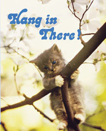 Hang in there cat cv