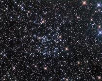 Star1 cv