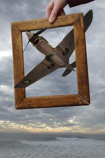 Stevens plane cv