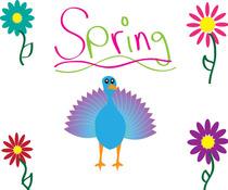 Stetzler spring cv