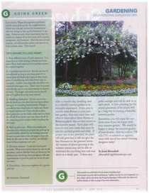 Gibbs hoa articles page 04 cv