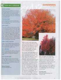 Gibbs hoa articles page 12 cv