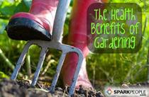 Gardening pitchfork3 cv