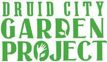 Drid city cv