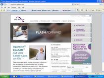 Spansion.com2008 cv