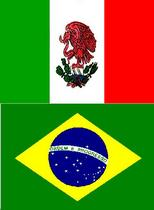 Spanish portuguese skills cv