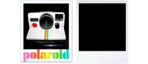 Polaroid cv
