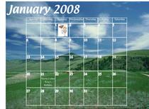 Calendar tiffany lovelady 1 cv