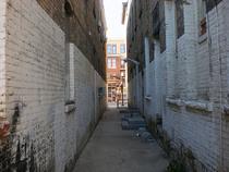 Alley2 cv