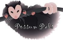 Possum12 cv