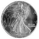 Silver dollar cv