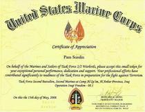 Usmc awards 002 cv