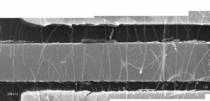 Sem nanowires cv