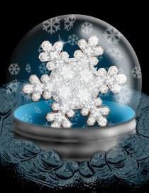 Caine winter cv