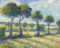 England spring field cv