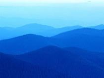 Blue hills cv