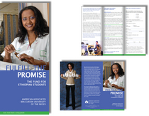 Ethiopian brochure sample cv