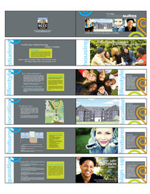 Brochure layout cv