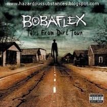 Bobaflex2007frontzs2 cv