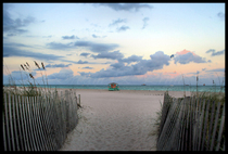 Miami 027 cv