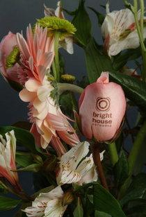 Flowers2 cv