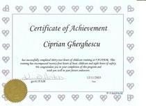 Child care training jpg document cv